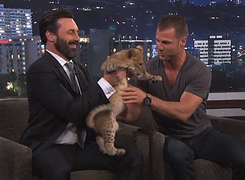WATCH: Jon Hamm & Dave Salmoni Get Wild With Tiger, Lion, and Leopard Cubs