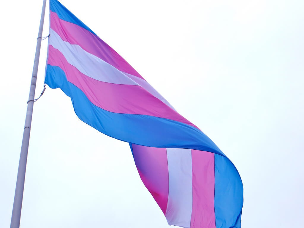 March 31st is Trans Day of Visibility